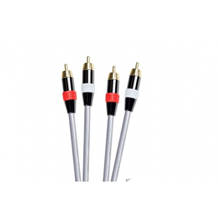 Cable de audio 2 x RCA...